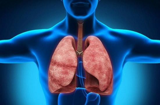 Туберкулез – первые признаки, симптомы, причины, лечение и профилактика туберкулеза