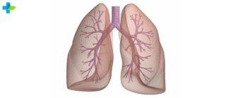 Вторичный туберкулез