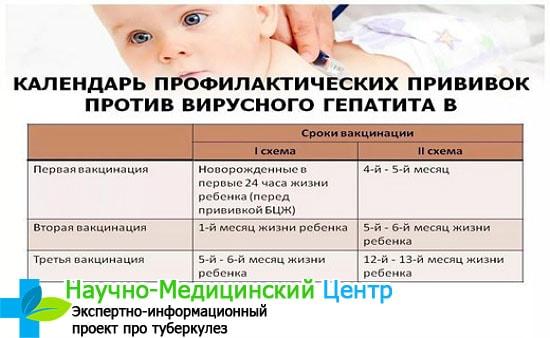 Как проводится вакцинация против гепатита в