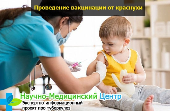 Прививки от краснухи взрослым график 41