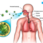 наследственность туберкулеза